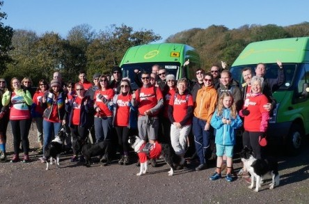 Walkers group make £17,000 for brain tumour charity – with support from Dorset Community Transport image